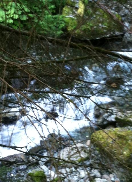 The 'revolutionary' Gold Creek rapids